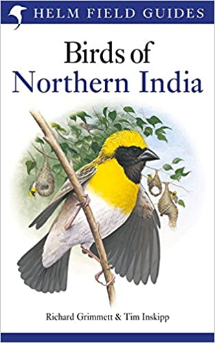 Best field guides of Asia