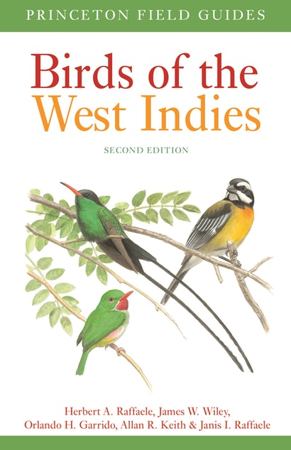 Best field guides of the Neotropics