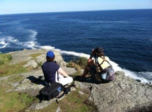 Scanning from the White Head overlook for seabirds, waterfowl, and whales Photo by Bob Schutsky