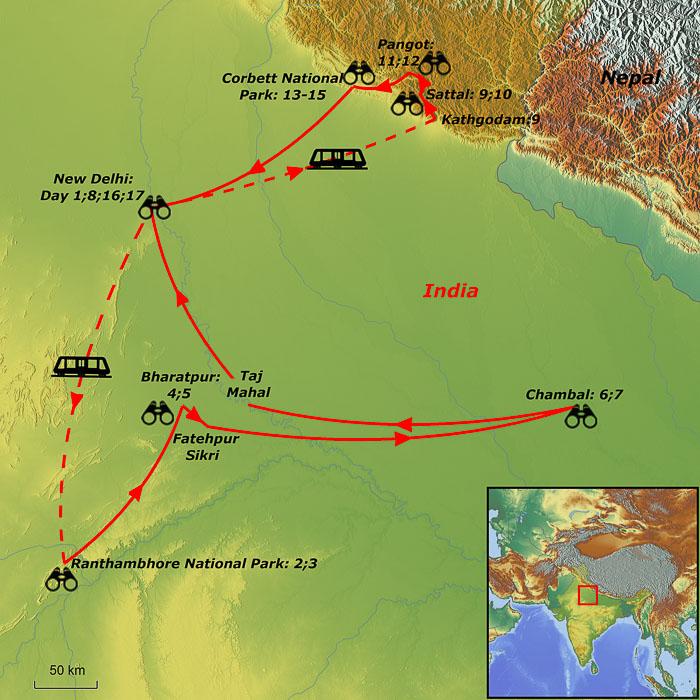 North India birding tours