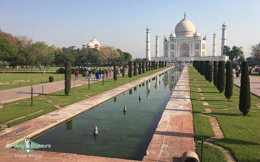 Northern India birding tour