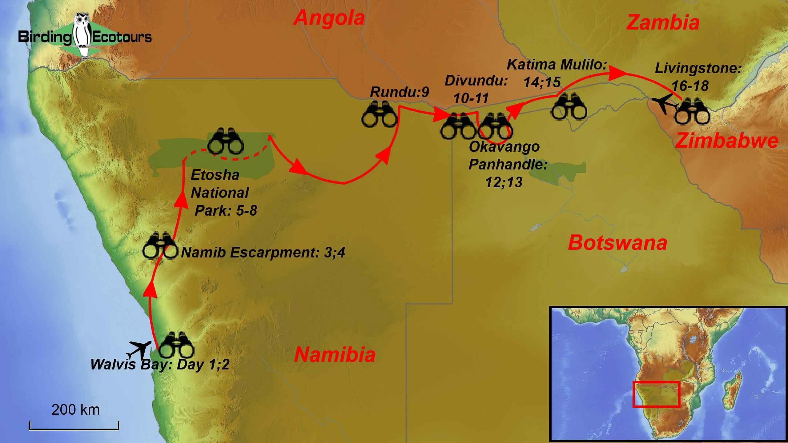 Namibia and Botswana birding tour