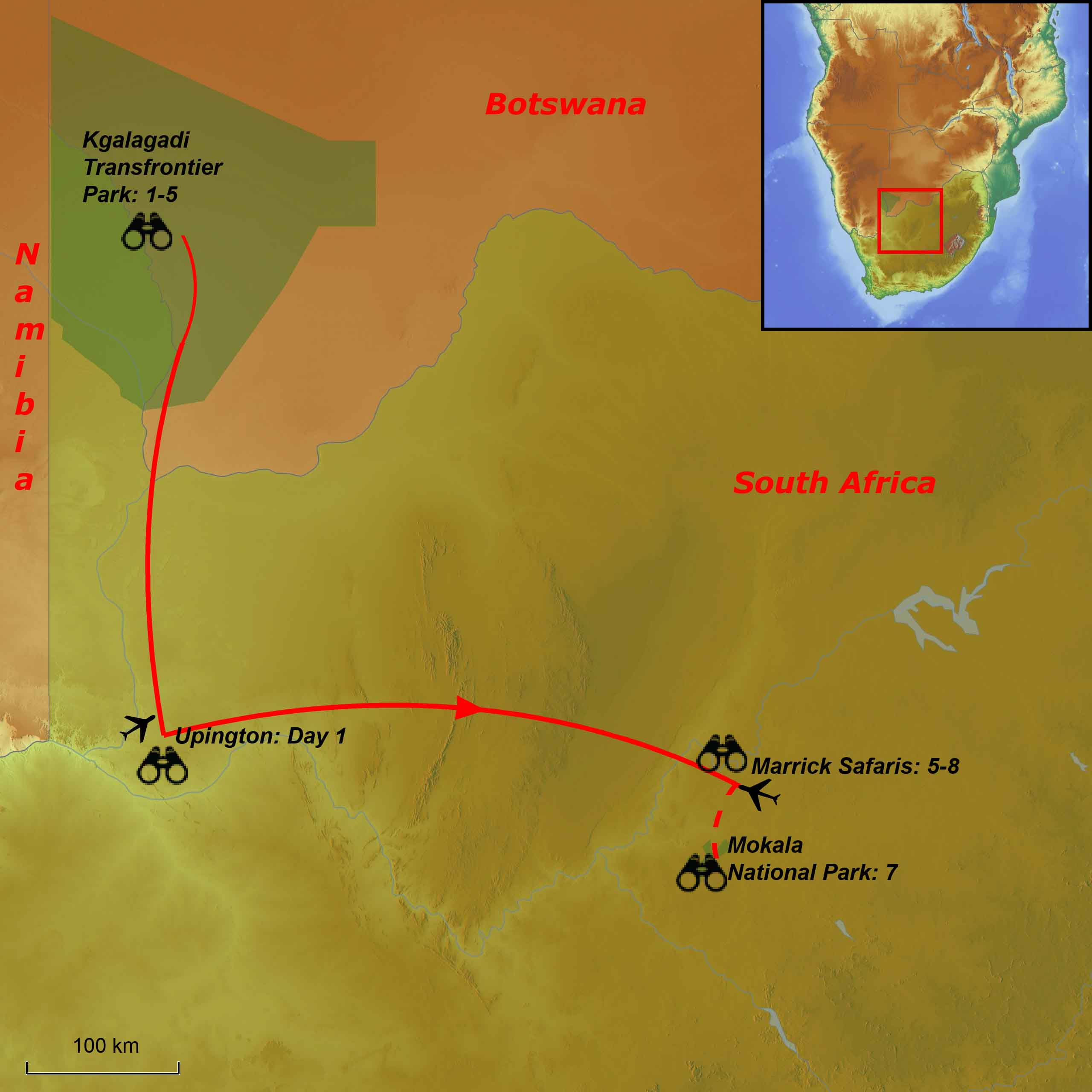 Kalahari mammal tour