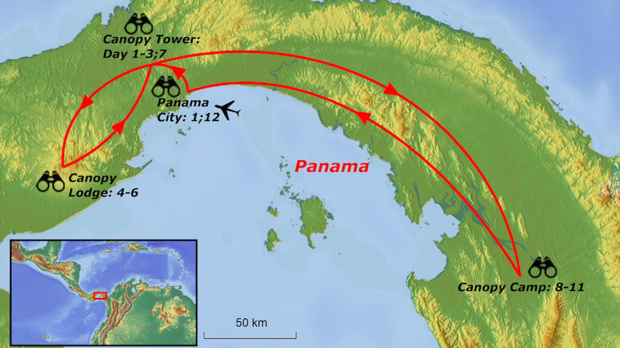 Central and eastern Panama birding tour