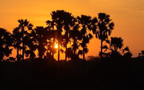 Malawi trip report