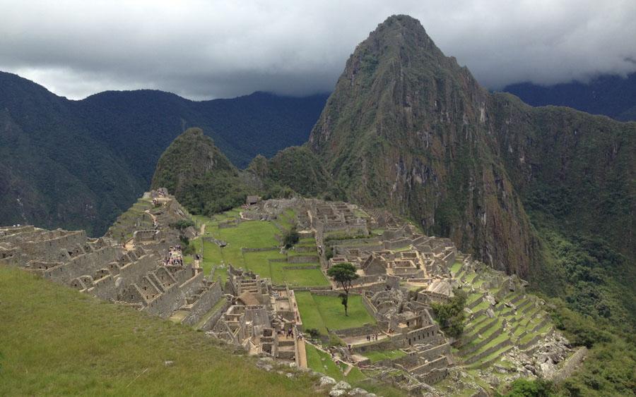 Southern Peru birding tours