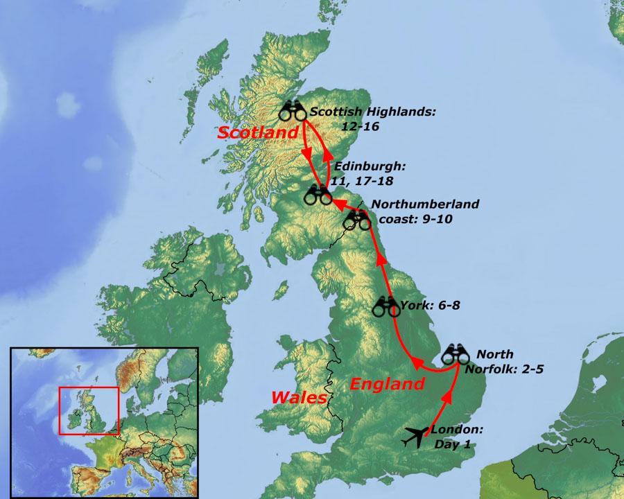 UK birding tours