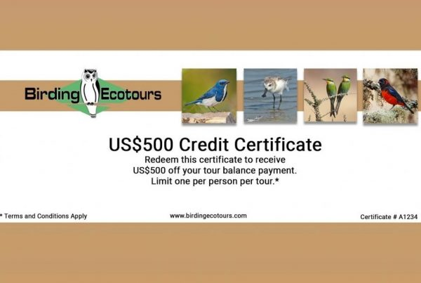 Birding Ecotours Certificate promotion