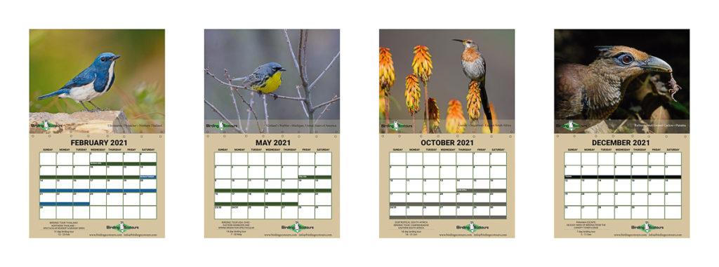 2021 calendar Birding Ecotours