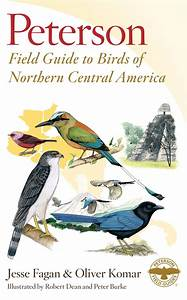 Birds of Northern Central America